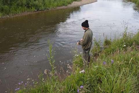 Рыболов на Шишиме