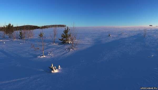 На краю зимнего поля