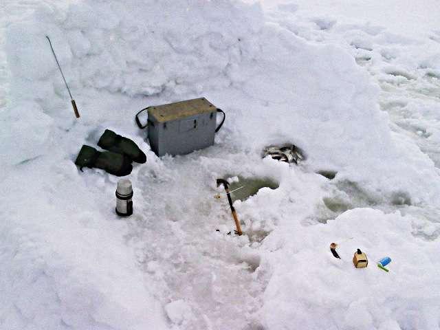 За снежным укрытием
