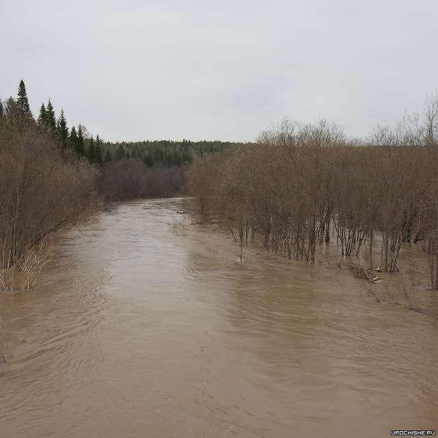 река Демид
