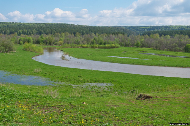 река Артя
