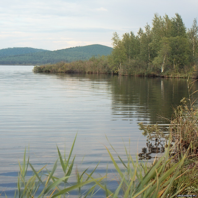 Верх-Нейвинский пруд