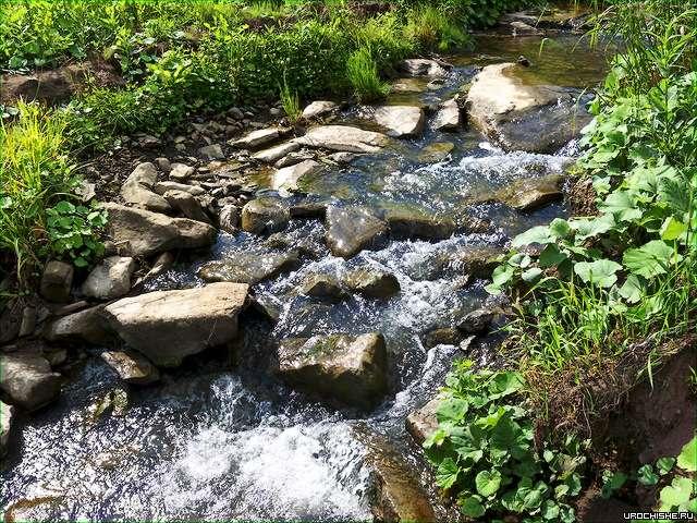 Ловля хариуса на поплавочную удочку- река