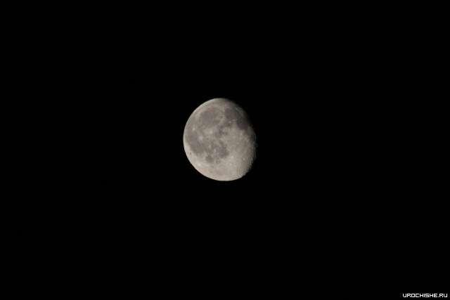 При убывающей луне карась клюёт лучше