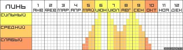 Линь- календарь клёва