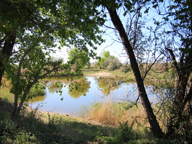 линёвый пруд