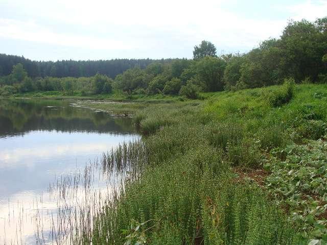 река, в которой может водиться линь