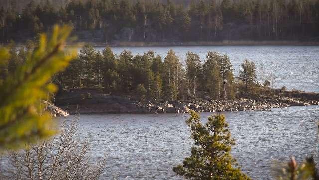 Ладожское озеро- место ловли хариуса