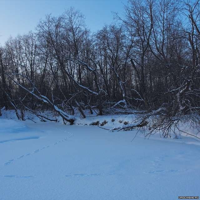 Малая река- место ловли хариуса зимой
