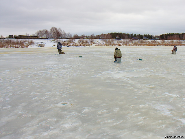 ротан зимой- места рыбалки