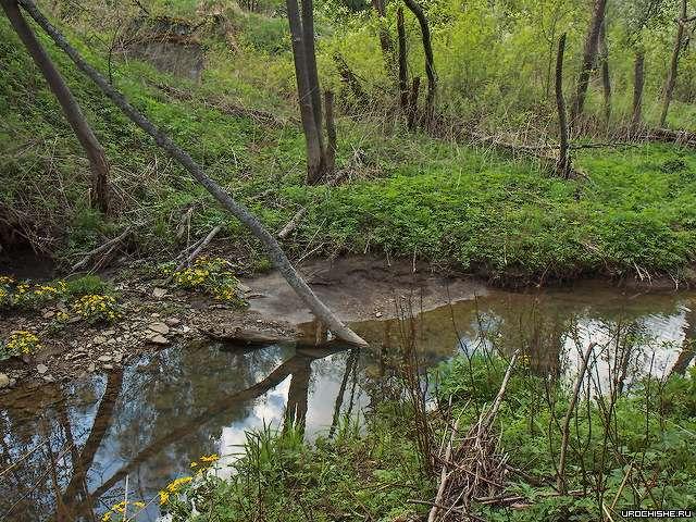 река Большая Расковалиха