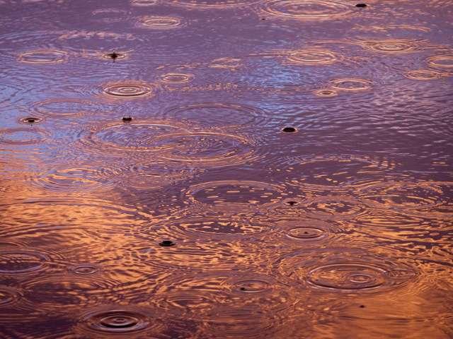 дождь и клёв рыбы