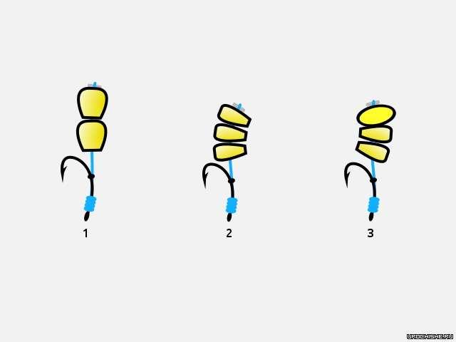 кукуруза на волосяной оснастке