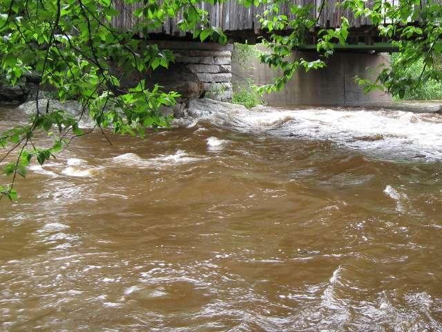 мутная река после дождя