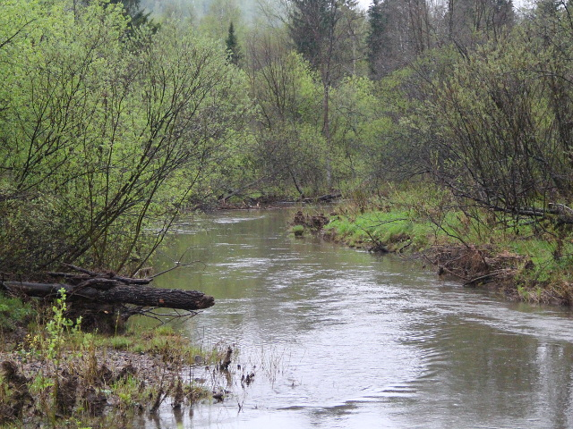 река Полуденный Бардым