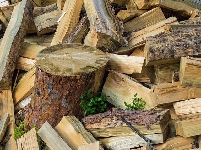 дрова для костра
