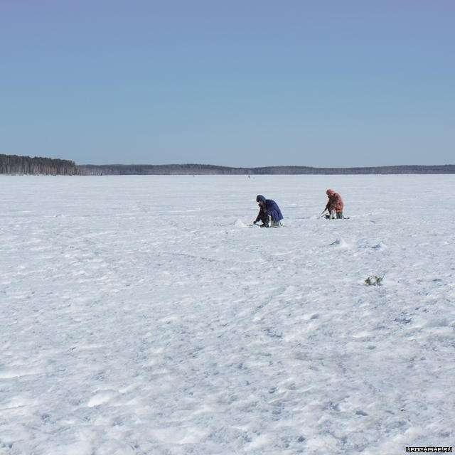 волчихинское водохранилище- зимняя рыбалка