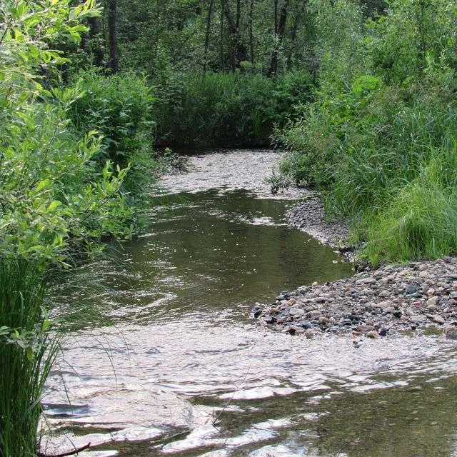 река Мариинская