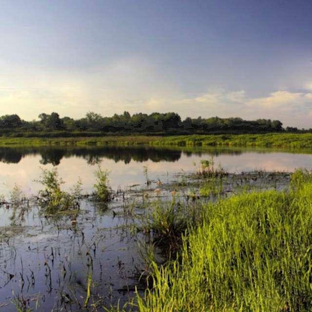 озеро Большой Толпак