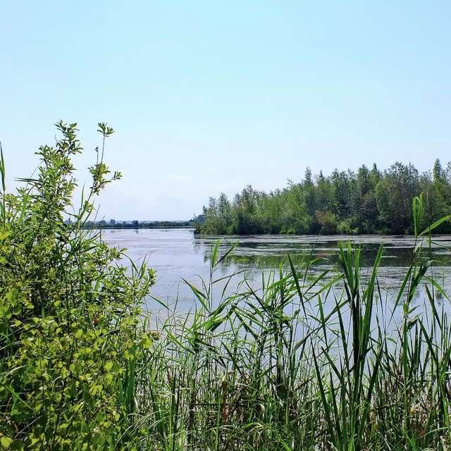 озеро Большие Касли