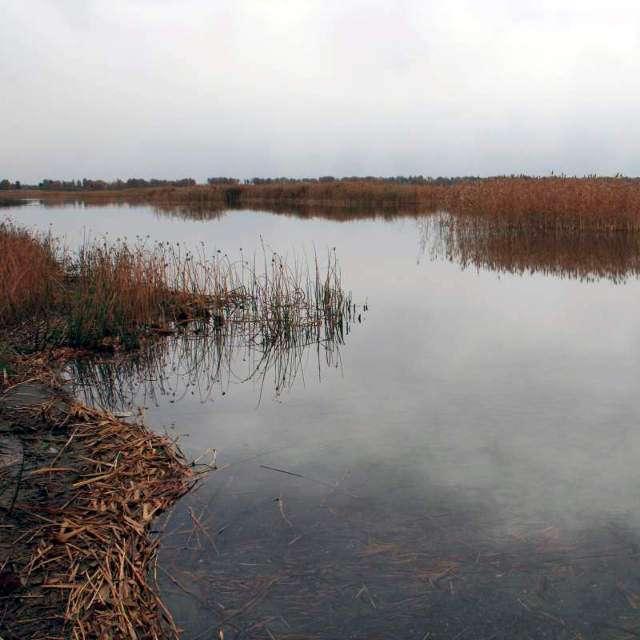 озеро Яу-Балык