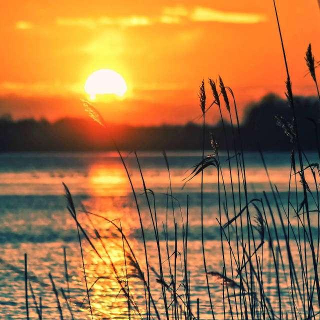 где ловить щуку- озеро
