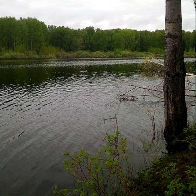 озеро Полушинское