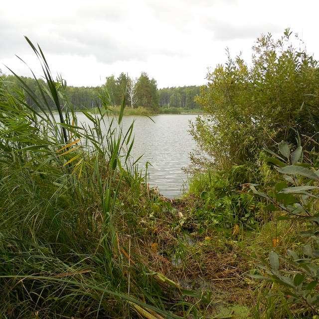 озеро Силач